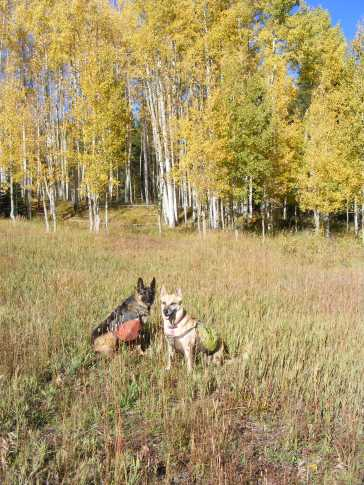 Draco and Leah on Carbon Creek