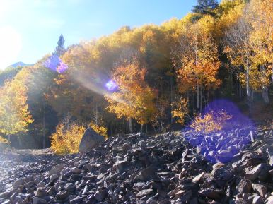 A sparkling day, aspen and talus on Ohio Creek