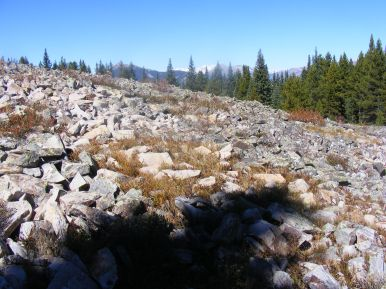 Talus field on the ridge to Point Lookout