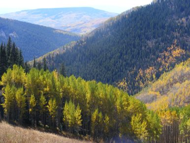 From the upper end of Walrod Gulch, looking at Red Mountain