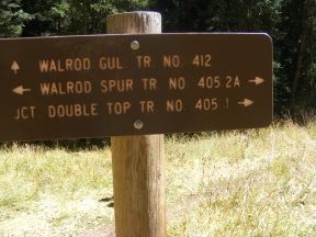 The junction of the Walrod Spur Trail No. 405.2A and Walrod Gulch Trail No. 412, Gunnison National Forest