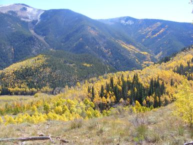 From Walrod Gulch, looking at Cement Creek and Mountain