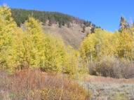 Glorious Fall day in Walrod Gulch
