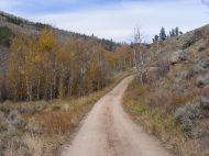 Willow Creek and Gunnison National Forest Road 882