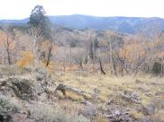 On the divide between Willow Creek and Illinois Gulch, looking at Lookout Mountain