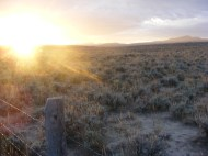 View of the sagebrush illuminated with morning's first rays, along Wyoming 70 some miles east of Baggs and west of Slater