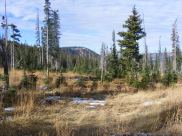 Atop the Great Divide between Battle Creek and the North Fork Encampment River in the Sierra Madre of Wyoming