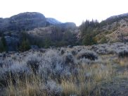 Looking up from the Trail Lake Trailhead on Torrey Creek, Shoshone National Forest in the State of Wyoming