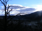 Looking out east over Torrey Creek, early morning