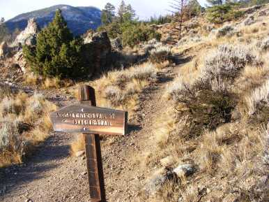 The junction of the Whiskey Mountain No. 804 and Glacier Trail No 801, Shoshone National Forest