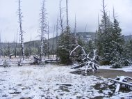Snow covering the landscape in Geyser Creek near the Artist's Paintpots