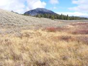 Bunsen Peak above Glen Creek in Yellowstone National Park