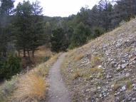 The Sepulcher Mountain Trail below the Beaver Ponds Trail