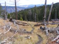 On the Sepulcher Mountain Trail, looking east towards Mount Everts and the Washburn Range