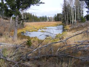 Small pond on Sepulcher Mountain