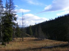 Just above Glen Creek