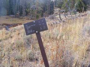 The junction of the Sepulcher Mountain and Sportsman Lake Trails