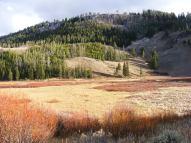 Grassy area below Terrace Mountain