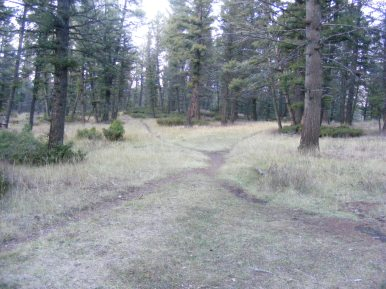 In the vicinity of the trail junction between the Upper Mammoth and Pinyon Terraces
