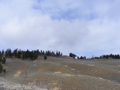 Headed up to Mount Everts on a blustery day in Yellowstone National Park
