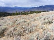 Looking north from Mount Everts, towards Yankee Jim Canyon which guides the Yellowstone River