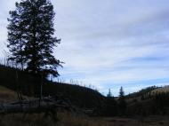Fall sky above Lava Creek