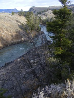Looking down the Yellowstone River, just above the confluence with the Lamar River
