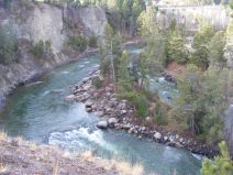 Fall day in Yellowstone National Park