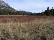 Looking upstream on Soda Butte Creek at the Beartooth Mountains