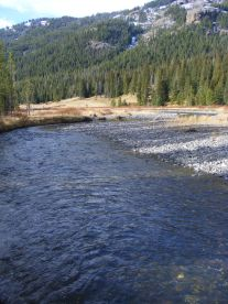 Looking down Soda Butte Creek in the northeast corner of Yellowstone National Park