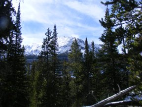 The northern end of the Absaroka Range as seen from Russell Creek
