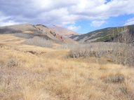 Teocalli Peak looming over West Brush Creek
