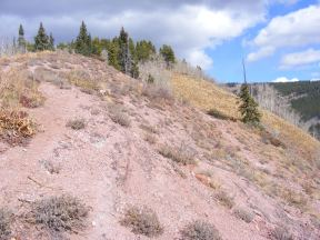 Red Soil in the Elk Mountains