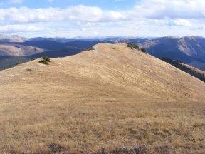 The grassy ridge dividing West Brush and Deer Creeks