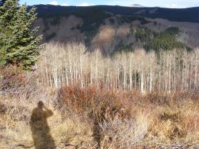 Self portrait in the Elk Mountains