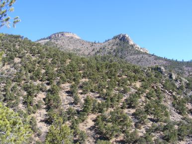 Looking up and over the pinon pine forest at Black Mesa while hiking on the Hermit's Rest Trail