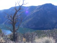 Looking down past the snag to Morrow Point Reservoir