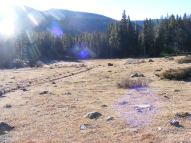 Looking across the meadow from the Fossil Ridge Trail to the Gold Creek Campground