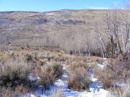 The trace of aspen denotes Cabin Creek