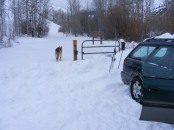 Draco at the Winter trailhead at Willow Creek,