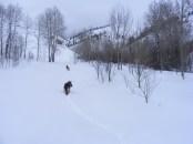 Leah and Draco making fresh tracks on the Gold Creek Road just above Quartz Creek