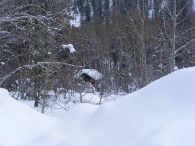 Hidden cabin on Gold Creek