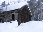 Old ruined structure from the mining era on Gold Creek. This building might now be completely squashed and splintered