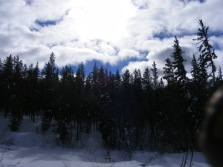 Sun behind the clouds, on Quartz Creek