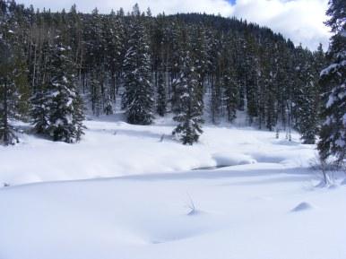North Quartz Creek swaddled in snow