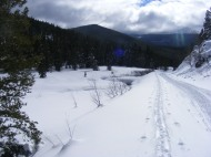My tracks on Gunnison National Forest 765, adjacent to North Quartz Creek