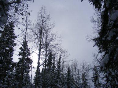 Winter's sky over Gold Creek