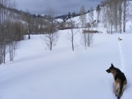 Leah and Draco on Willow Creek near the old cabin
