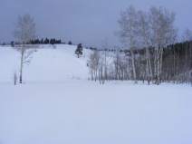 Typical Winter scene on Willow Creek