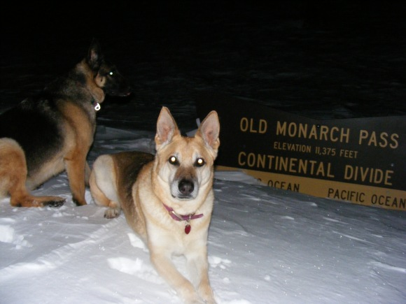 Draco and Leah on Old Monarch Pass during a moonlit ski adventure